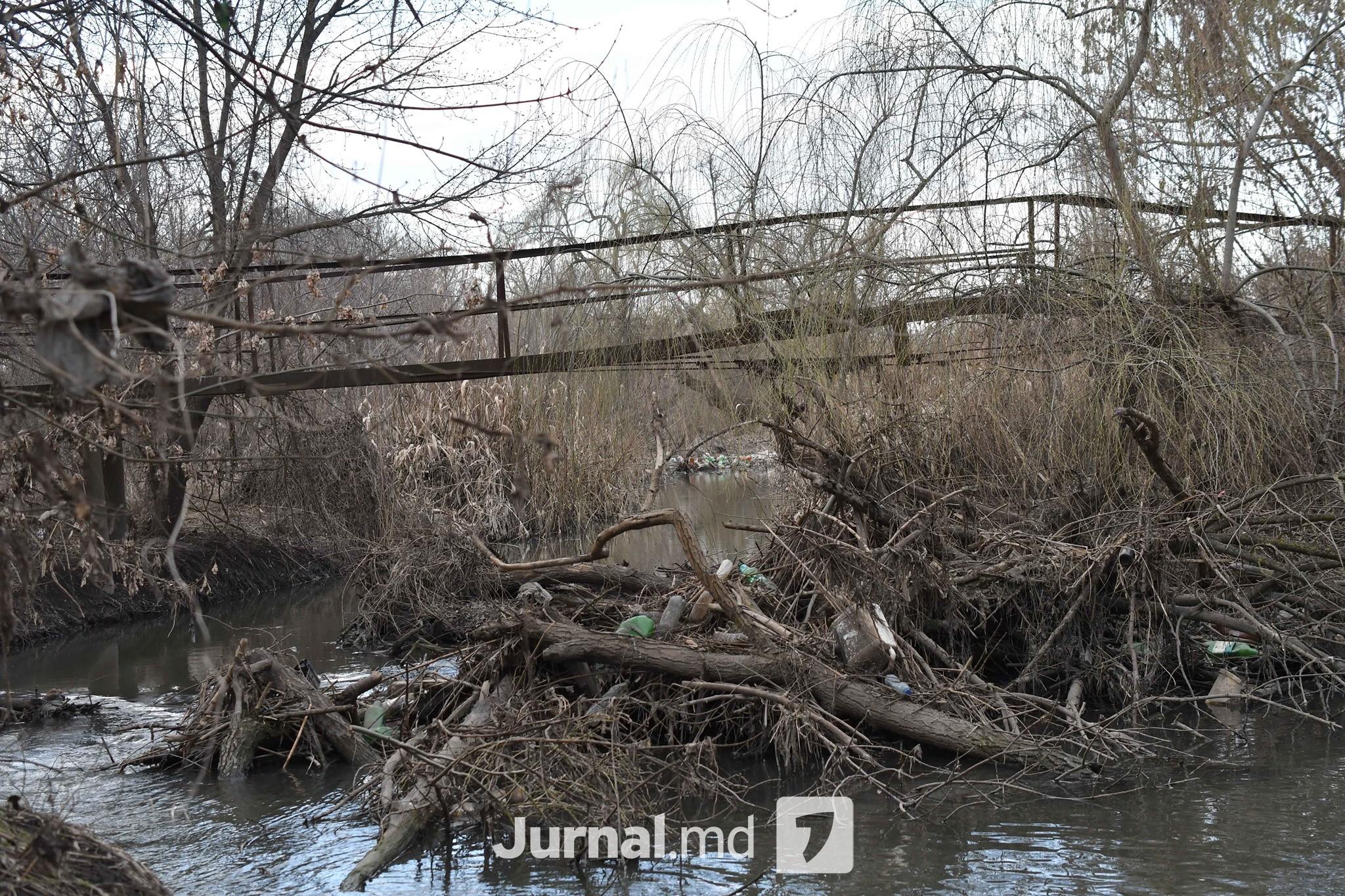 Bâc râu